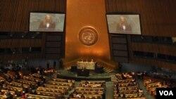Мира Сорвино выступает в Генассамблее ООН