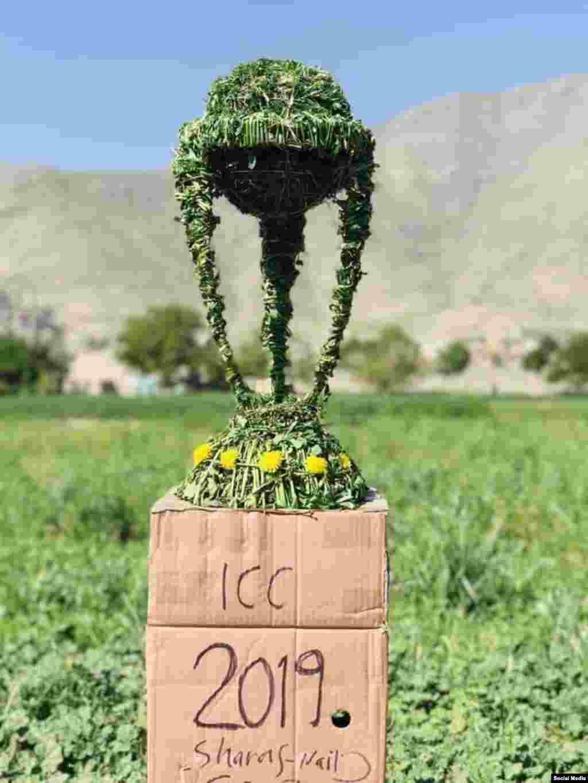 شریف نایب، دهقان جوان افغان جام قهرمانی کرکت را با استفاده از گیاه و علف شبیهسازی کرده است.