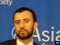 阿里內德, 蘭德公司國際關係政策分析員