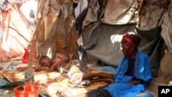 UNHCR oo Walaac ka Muujisay Xaaladda Somalia