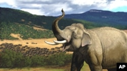 The U.S. Ecological History Park sign in Carl Buell's provocative illustration makes it clear this is not Africa.
