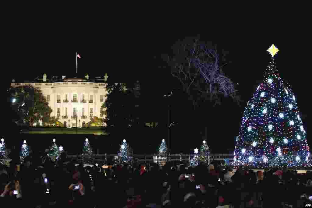 Cây thông Giáng Sinh Quốc gia của Hoa Kỳ đặt trước Tòa Bạch Ốc, được thắp đèn hôm 1 tháng 12. (Reuters/Molly Riley)