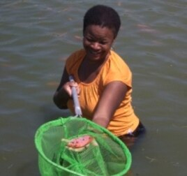 Boston physician Arielle Adrien nets a fish on the Kiskeya Aqua Ferme (farm) in Haiti.