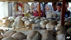 An estimated 500,000 Cambodian Muslims died under the Khmer Rouge, through overwork, starvation or execution.