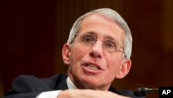 FILE - NIH National Institute of Allergy and Infectious Diseases Director Anthony Fauci.