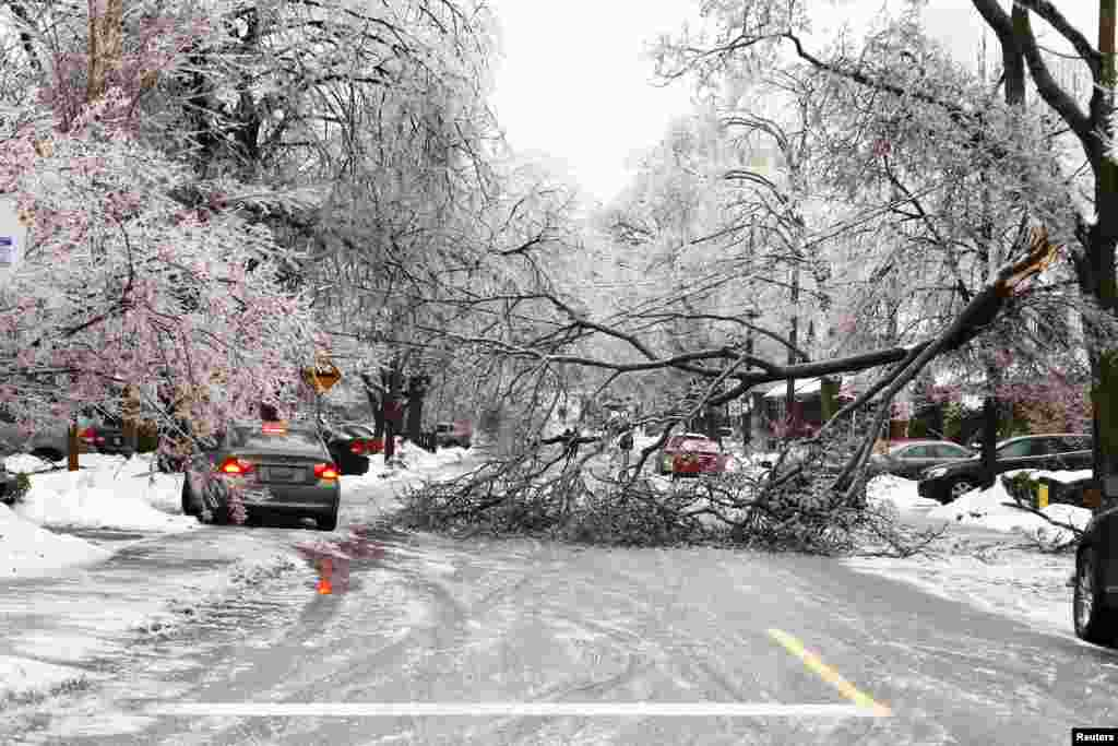 A vehicle tries to drive over a sidewalk to avoid an ice-covered tree branch that came down after freezing rain in Toronto, Canada. Thousands of households are without power in the Greater Toronto area following an overnight ice storm.