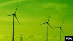 Salah satu teknologi ramah lingkungan yang mulai banyak digunakan di Amerika adalah kincir-kincir listrik tenaga angin