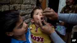 巴基斯坦一名健康工作者正為一名兒童服用小兒麻痹症疫苗。(2014年12月8日資料照)