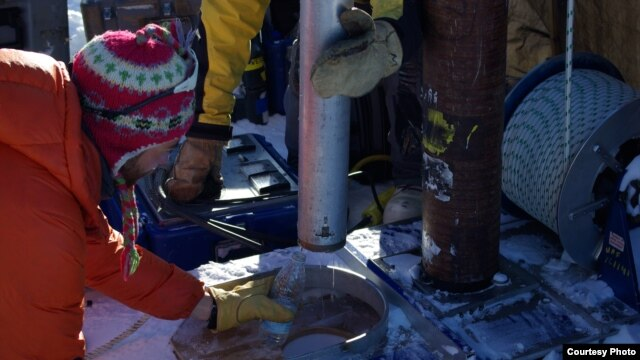 Water from the Greenland perennial firn aquifer draining from a core extracted 12 m below the surface of the ice sheet. The core was drilled in April, months prior to seasonal melt, with air temperatures -15 C confirming the water was retained at depth th
