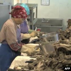 Predstavnici industrije garantuju potrošačima da se strogo kontroliše kvalitet i poreklo morskih plodova