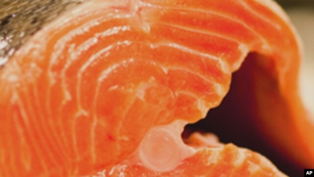 File - The EPA and FDA have recommended that pregnant women eat more fish such as salmon.