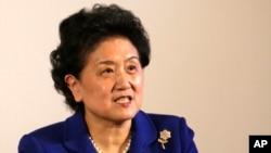 中国副总理刘延东11月18日在芝加哥大学举行的美中大学校长圆桌会议上讲话