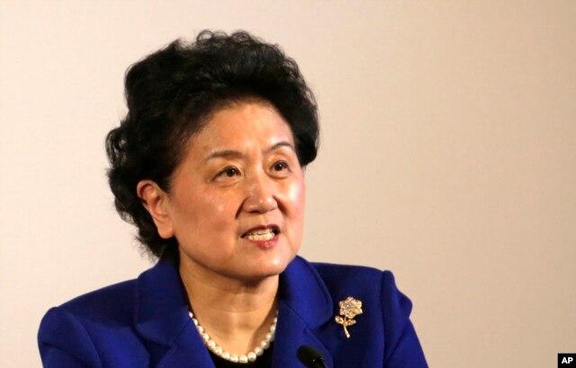 中国副总理刘延东(资料照片)