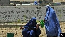 两名阿富汗女子正在地里浇水