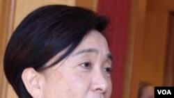 刘慧卿:香港民主党副主席,资深议员