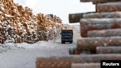 FILE - A truck drives past stacks of pine logs at a wood processing plant of the Kraslesinvest state company, located in the Taiga area in the Boguchansky district of Krasnoyarsk region, Russia, February 3, 2017. (REUTERS/Ilya Naymushin )