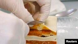 Seorang petugas laboratorium Bern, Swiss, tengah memeriksa kandungan daging yang terdapat dalam produk pasta yang beredar di pasaran (Foto: dok). Perusahaan pangan terbesar di dunia, Nestle, telah menarik produk makanan pasta daging sapi berlabel Buitoni dari pasar Italia dan Spanyol karena mengandung lebih dari satu persen daging kuda, Senin (18/2).