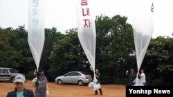 지난 6월 한국 경기도 김포에서 북한으로 대북 전단을 보내는 탈북 단체 '자유북한운동연합' 회원들. (자료 사진)