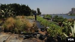 Kế hoạch xây đập của Ethiopia bị cho là sẽ làm cho nước sông Nile ít đi trong nhiều năm.