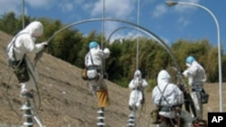 전력복구 작업을 하는 일본 기술자들