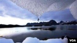 Melelehnya es dunia akibat pemanasan global seperti di wilayah Greenland ini berpotensi menaikkan permukaan air laut setinggi satu meter di akhir abad (Foto: dok).