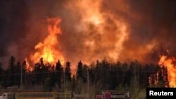 کینیڈا کے شہر فورٹ مک مرے کے جنگل میں لگنے والی آگ کا ایک منظر۔ فائل فوٹو