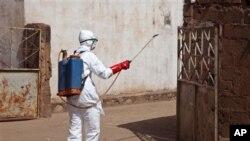 Seorang petugas kesehatan menyemprot disinfektan dekat sebuah masjid, setelah jenazah seseorang yang tewas akibat Ebola dimandikan di dalam sebelum dimakamkan di Bamako, Mali.