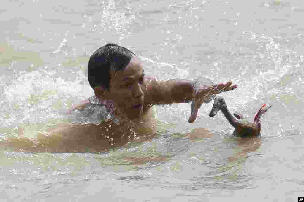 "A man tries to catch a duck during a competition as a part of the Dragon Boat Festival, known locally as ""Peh Cun Festival"", on the Cisadane river in Tanggerang, Indonesia."
