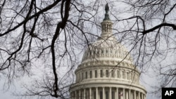 미국 워싱턴의 국회의사당 건물 (자료사진)