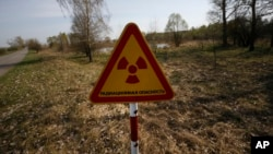 FILE - In this photo taken on Monday, April 11, 2016, a radiation warning sign is placed near the check-point 'Maidan' of the state radiation ecology reserve inside the 30km exclusion zone around the Chernobyl nuclear reactor. (AP Photo/Sergei Grits)