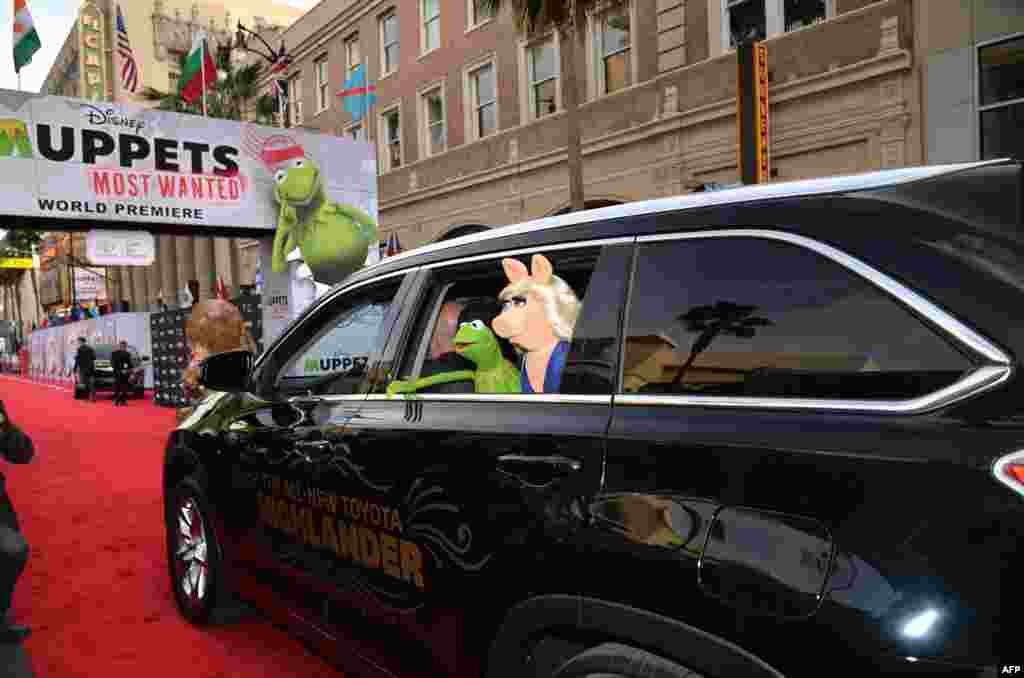 Kermit the Frog and Miss Piggy arrive for the premiere of Disney's 'Muppets Most Wanted' at the El Capitan Theatre in Hollywood, California, March 11, 2014.