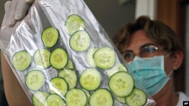 A laboratory worker tests Hungarian cucumbers for bacteria at the Food and Feed Safety Directorate of the Central Agricultural Office in Budapest June 9, 2011