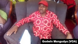 Acting MDC-T president Nelson Chamisa.