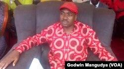 VaNelson Chamisa ndivo vadomwa kuti vatore chigaro chasiiwa naVa Morgan Tsvangirai.