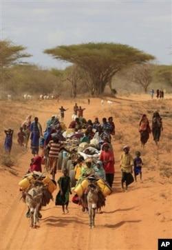 Corne de l'Afrique : l'aide alimentaire n'arrive pas assez rapidement selon OXFAM