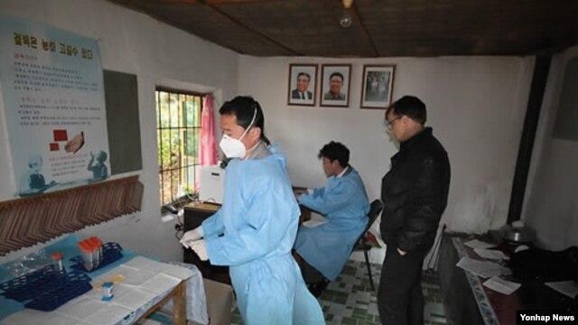 지난 2012년 10월 북한 내 결핵센터 직원들이 검사장비를 이용해 결핵 감수성 검사를 하고 있다. (자료사진)