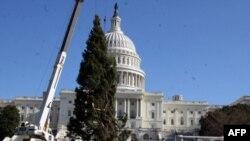 Різдвяну ялинку встановлюють перед Капітолієм 30-го листопада 1010 року.