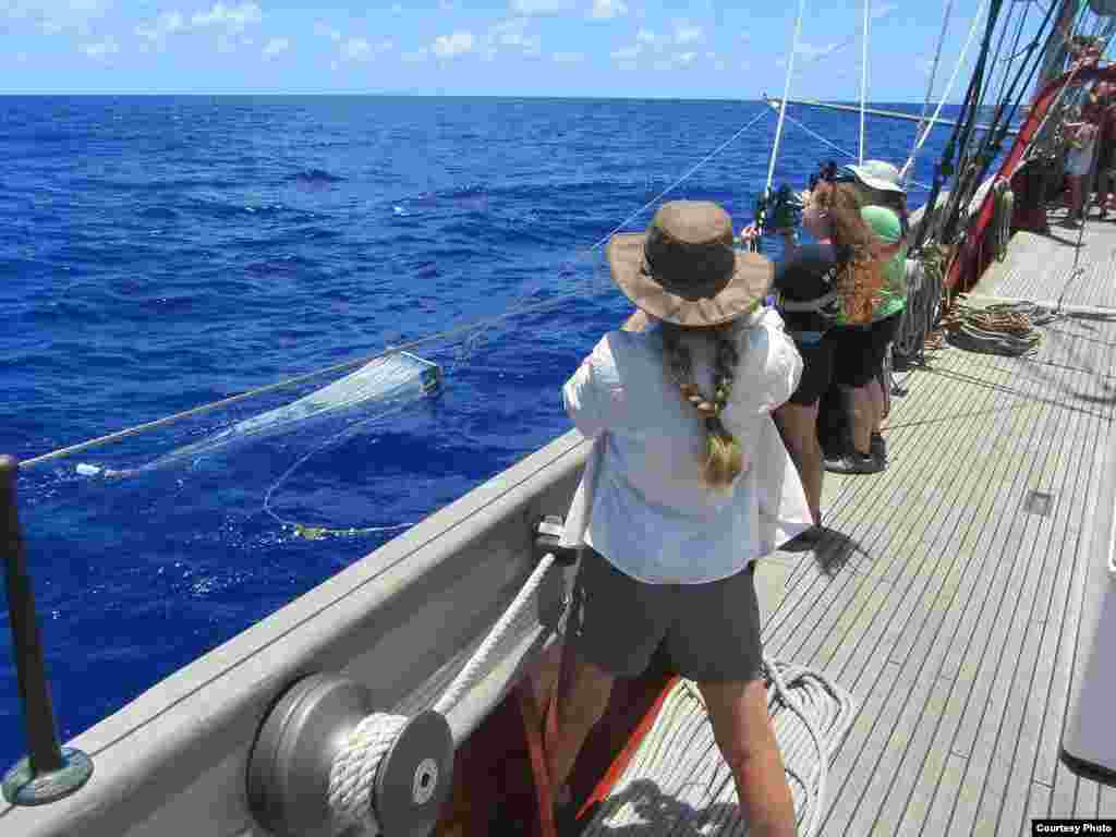 SEA Semester Chief Mate Rocky Hadler tows a net aboard the Crowith Cramer. (Credit: E. Zettler, SEA Education Association)