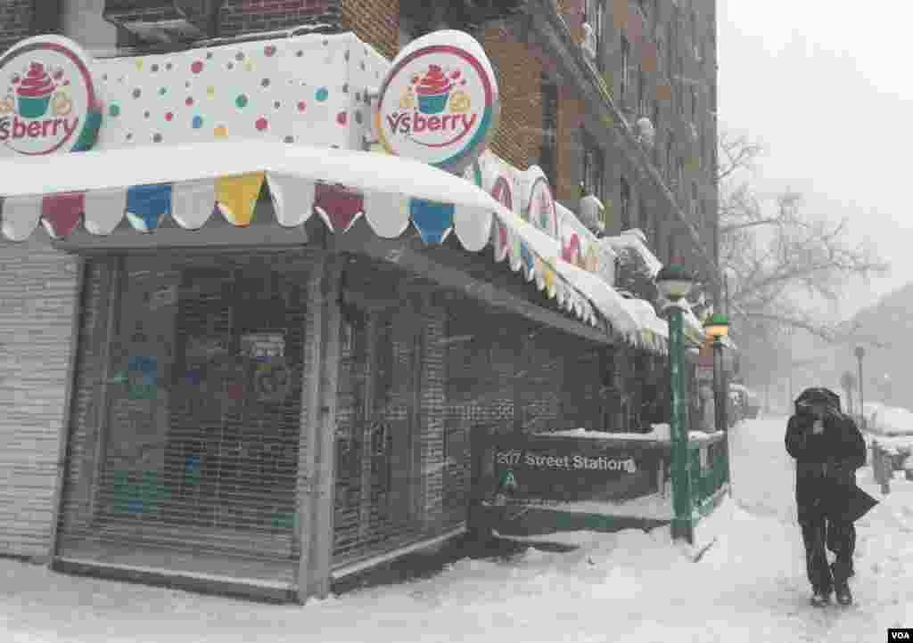 暴雪后的纽约 (美国之音平章拍摄)
