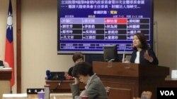 台湾亲民党籍立委陈怡洁在立法院质询陆委会官员(美国之音齐勇明拍摄,2019年10月30日)