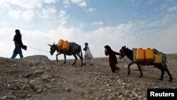 FILE - An Afghan internally displaced family carries water containers on their donkeys on the outskirts of Jalalabad city, Afghanistan, January 26, 2015.