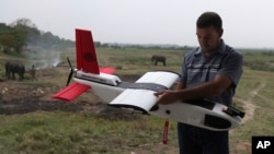 FILE - A mahout walks past with an elephant used for tourist rides as Remo Peduzzi, Managing Director, Research Drones LLC Switzerland prepares to fly an unmanned aircraft or drone at the Kaziranga National Park at Kaziranga in Assam state, India, April 8, 2013.