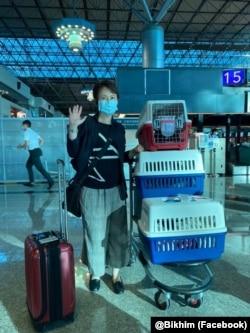 台湾驻美代表萧美琴2020年7月22日带爱猫赴美上任(萧美琴脸书)