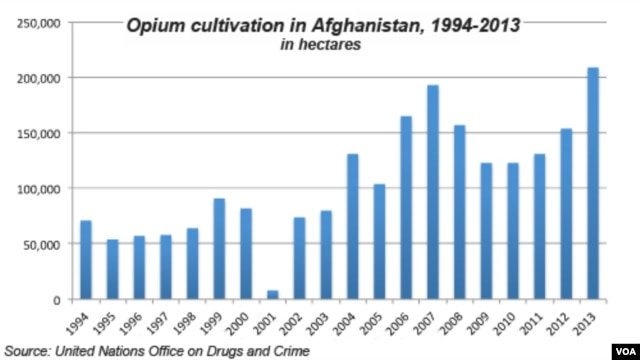 Opium cultivation in Afghanistan, 1992 - 2013