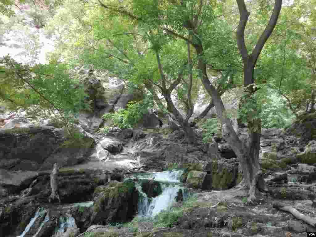 آبشار آتشگاه لردگان، چهارمحال و بختیاری عکس: مصطفی اسماعیلی(ارسالی شما)
