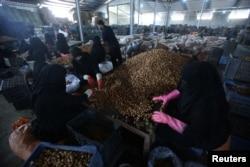 FILE - Iraqi women sort the dates at a factory in Kerbala, Iraq, Oct. 14, 2017.
