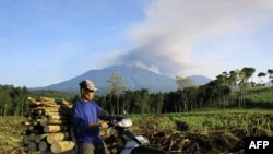 An Indonesian man carrying firewood on a motorcycle passes a field in Banyuwangi located in eastern Java island as Mount Raung volcano emits steam and ash (background), July 21, 2015.