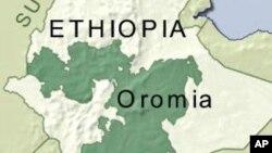 Peta Oromia, Ethiopia.