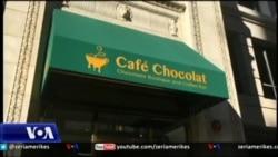 """Shqiptari sjell një """"muze"""" çokollate në Uashington"""