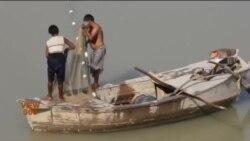 دریائے سندھ میں پانی کی کمی کی وجہ سے ماہی گیر پریشان